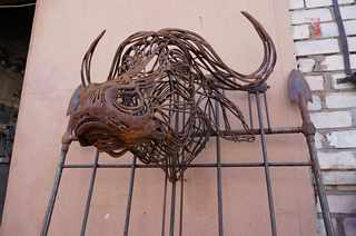 African Bull from wire