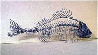 Sculpture of wire, Sergio Selary